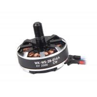 Двигатель (CW) (WK-WS-28-014A)